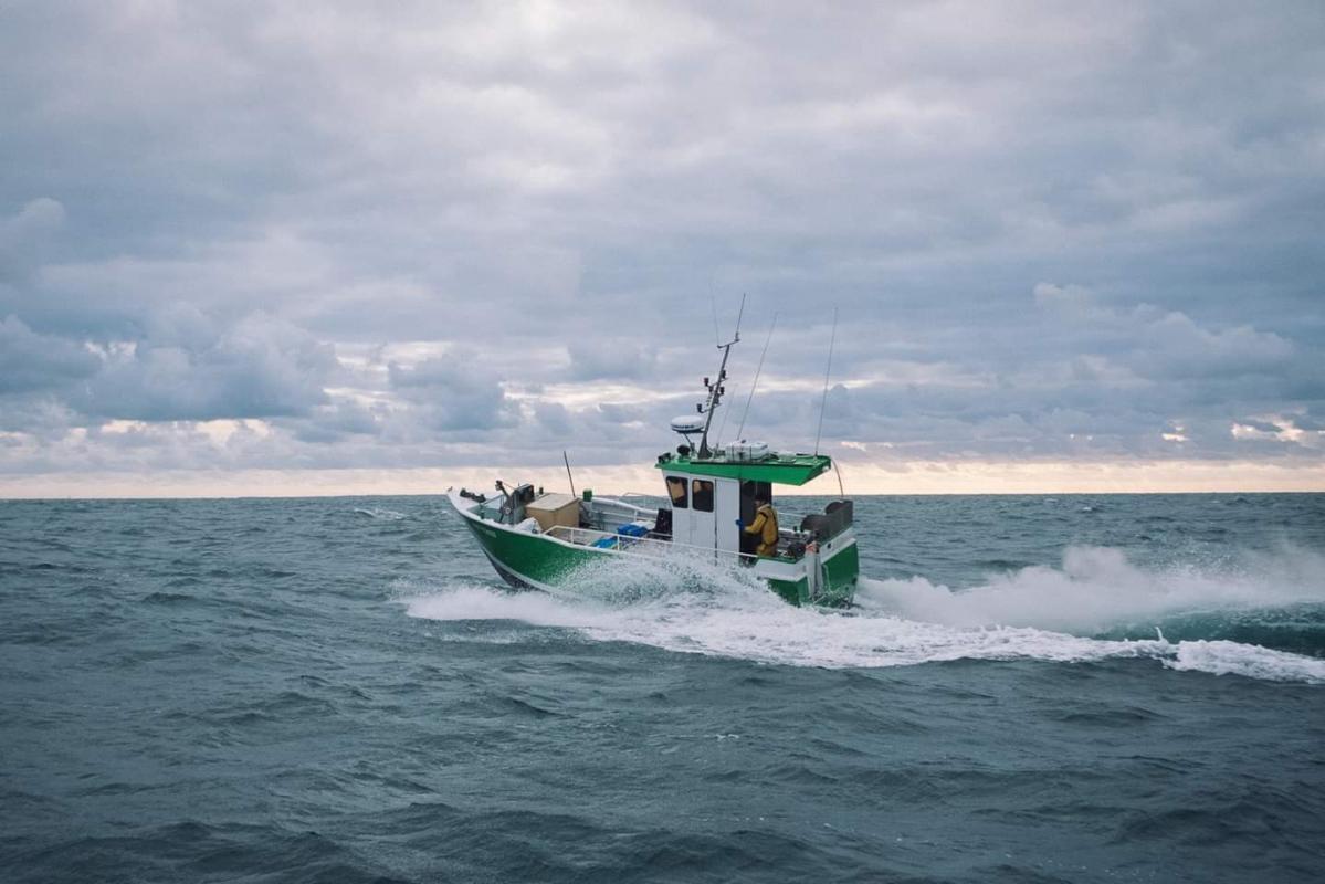 Abalone mer