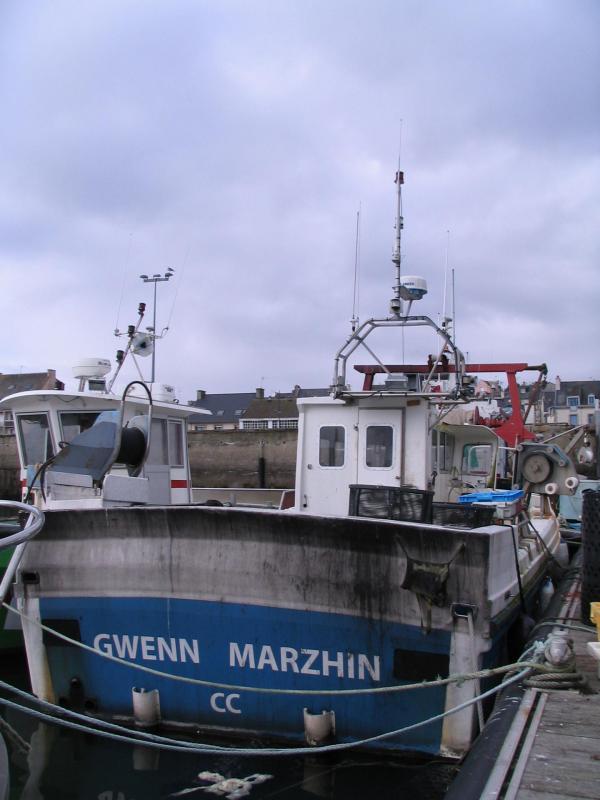 Gwenn marzhin cc905661 1