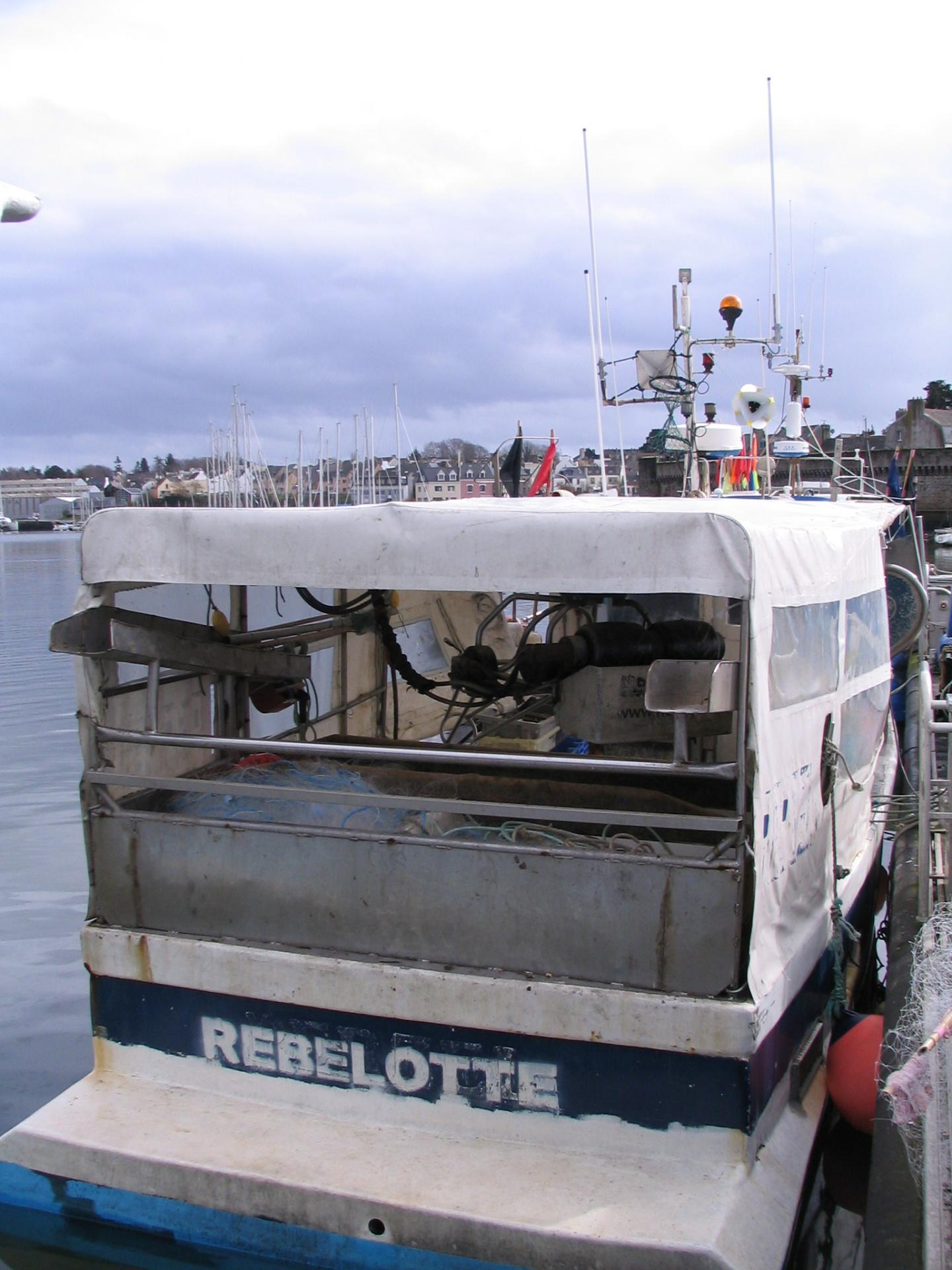 Rebelotte cc546041 1